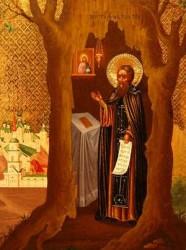 Преподобный Тихон Медынский